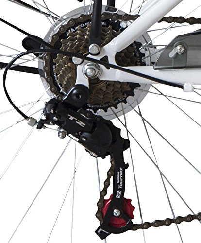 cambio Shimano TY21 city bike ecosmo